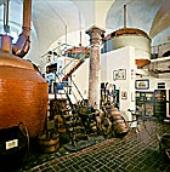 sudhausmuseum_kjpg